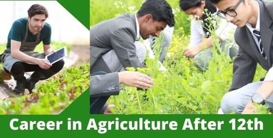 career in agriculture after 12th