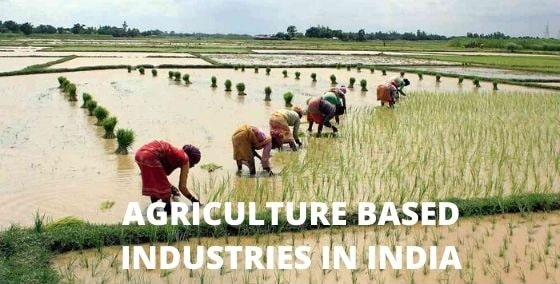 Agriculture Based Industries in India