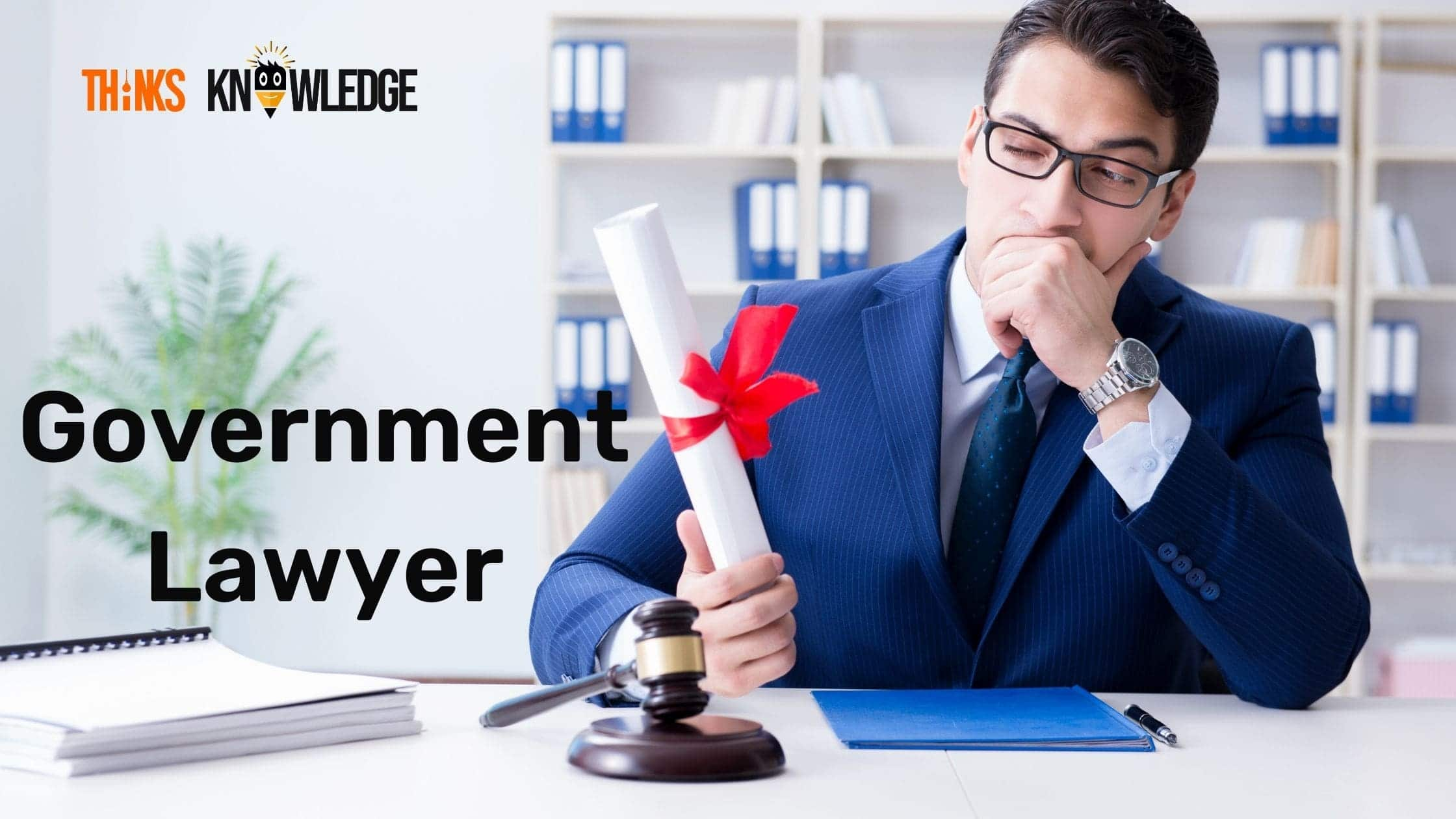 Government Lawyer
