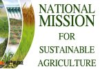 National Mission for Sustainable Agriculture